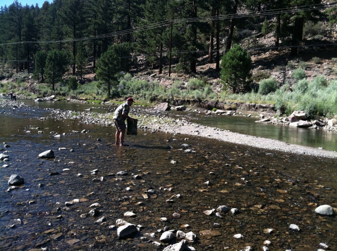 Collecting water in a sun shower on the West Walker River.  We used the water to wash dishes since there wasn't any water at the campground.