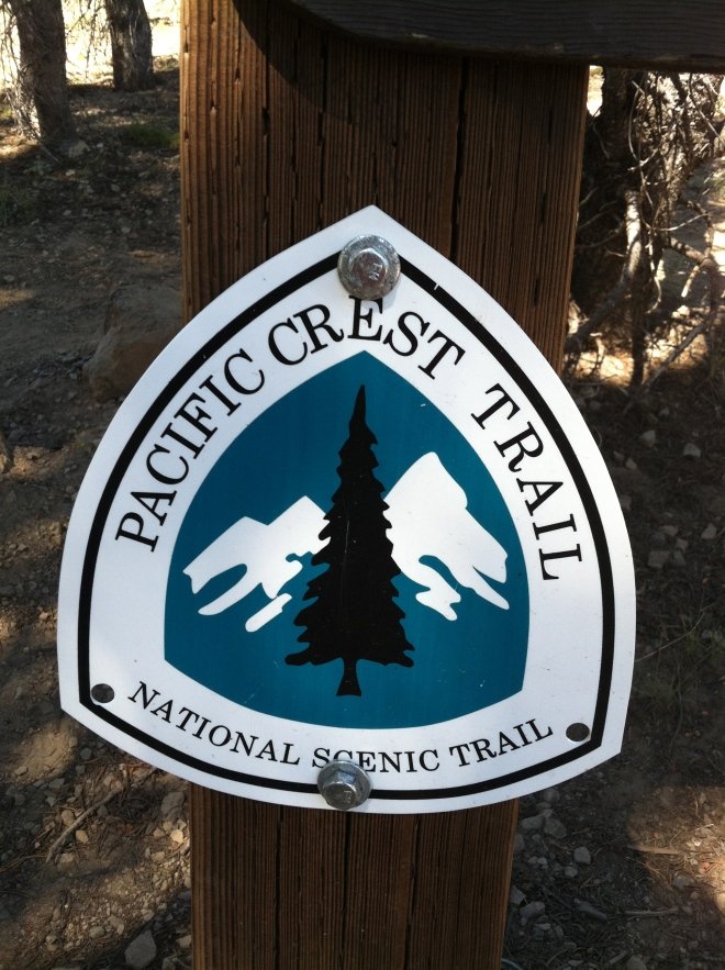 The PCT. Seems like no matter where we live or go, we keep coming across it. Our friend Golightly is going to do the entire hike with his two kids. We have another unnamed friend that likes poaching it on his mountain bike in San Diego County.