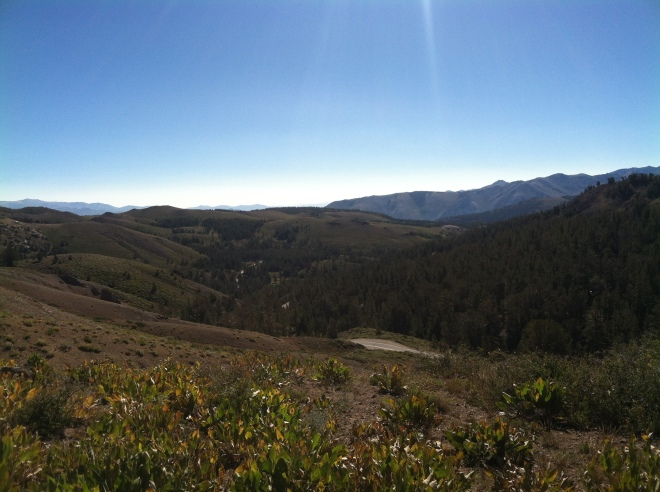 Look closely and you see glimpses of the 108 Sonora Pass Hwy.