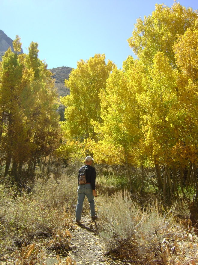 Convict Lake Trail, October 5th