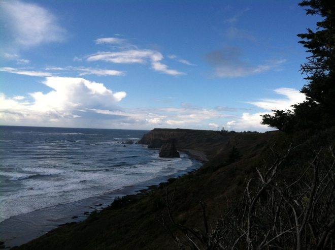 Looking north towards the Cape Blanco lighthouse.