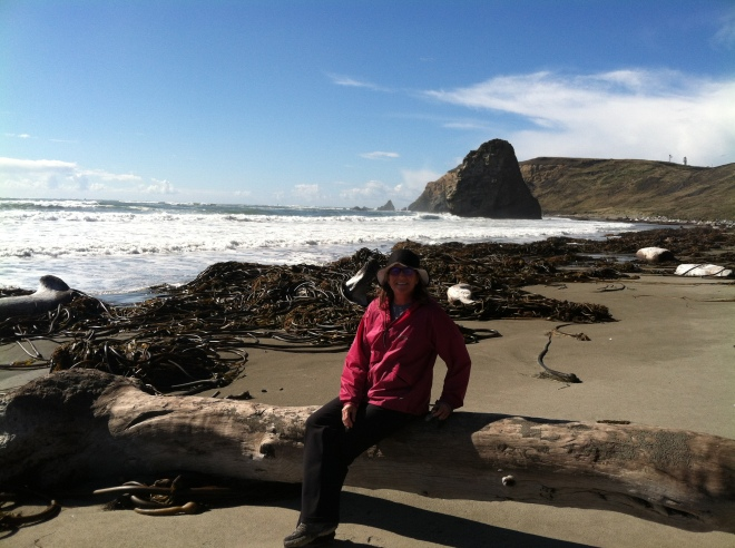 We lucked out this time! By the time we reached the beach that storm had floated away to the south. They grow seaweed big up here! The driftwood was impressive too.
