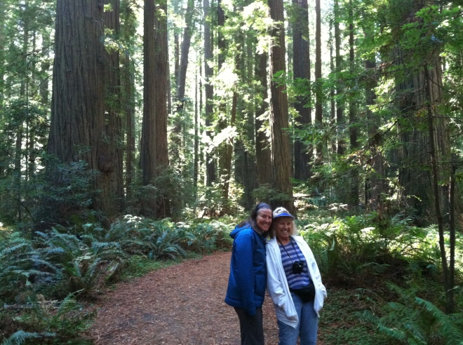Going on an easy morning walk at Founder's Grove in Humboldt Redwoods State Park.