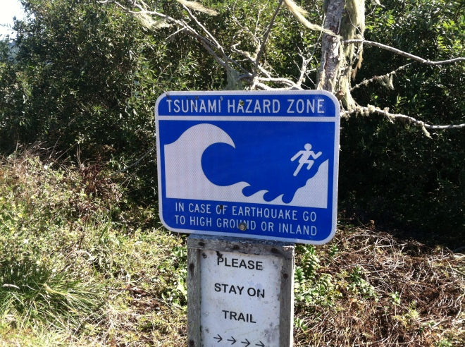 I love the dude running up the hill in front of the wave. These signs were all over the Oregon and Northern California coast.