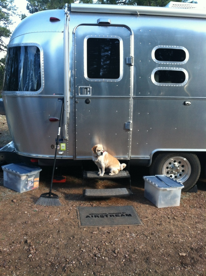 Porch step Queen of the Airstream.