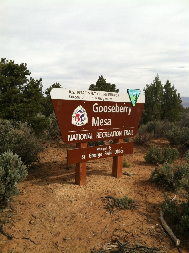 The one and only Gooseberry Mesa.