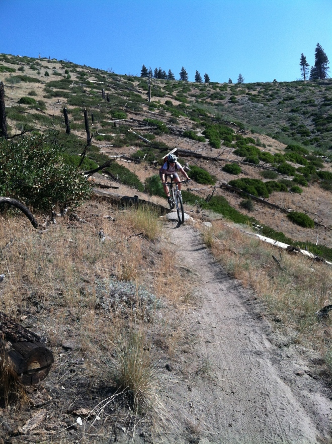 There's actually one good riding spot in Carson City: Ash Canyon and we rode it three days in a row.