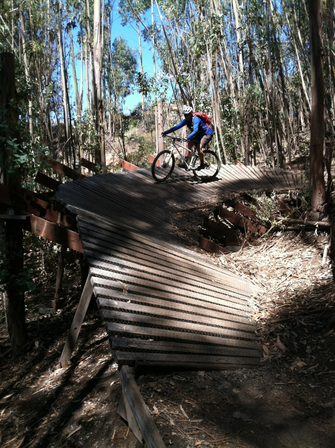 Eucs Project. A cool little skills park in a eucalyptus grove at West Cuesta.