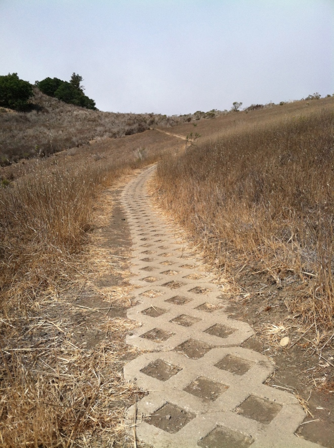 One of the trails at Morro Bay State Park. The longest paver trail we've encountered, it was at least a quarter mile.
