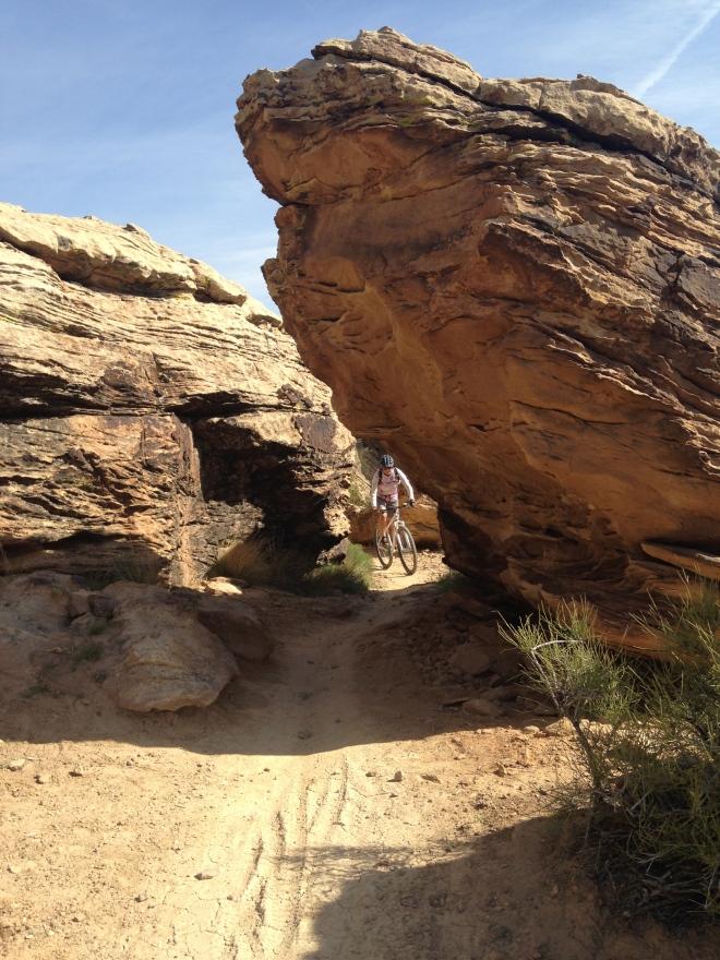 Another Zen Trail shot of Amelia.