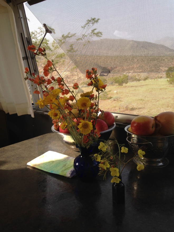 Mrs. Fancy Pants likes wildflowers in vases on the dining room table.