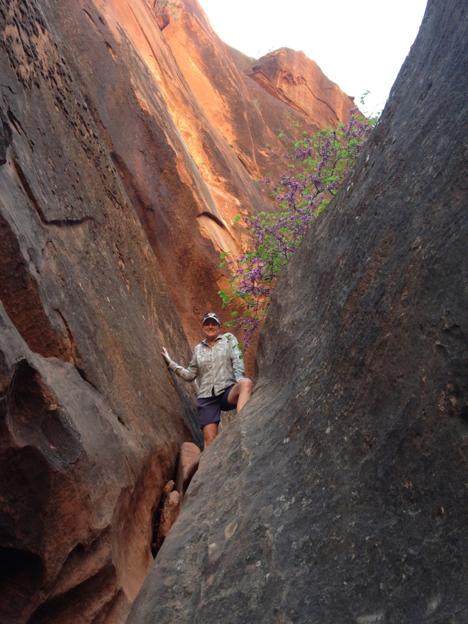 The lucky Mrs. Harris at Red Cliffs.
