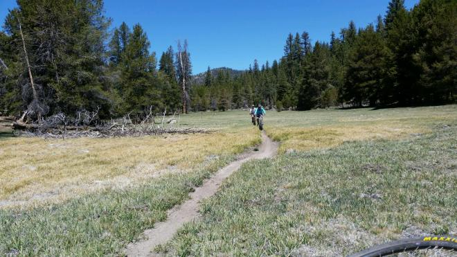One of the many meadows we crossed before hitting the Plunge.