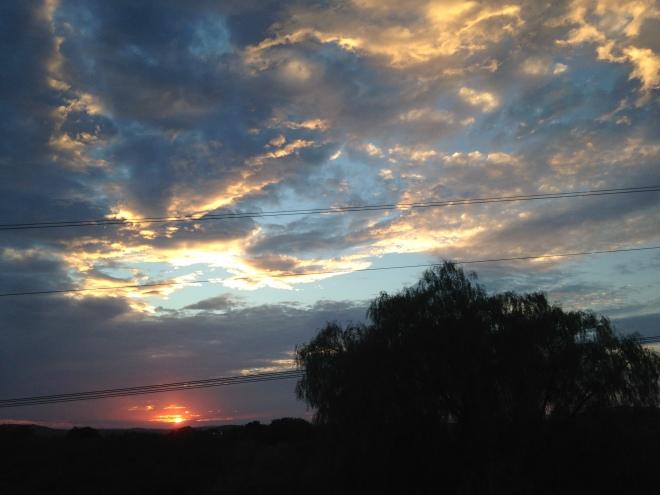 Backyard sunset from last night.